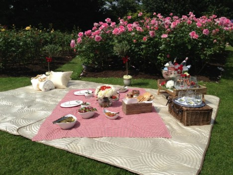 luxury-Picnic-468x351